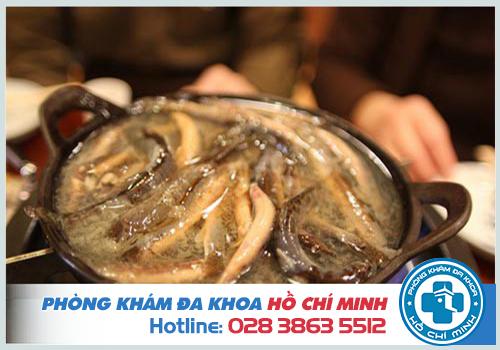 Bài thuốc dân gian chữa tinh trùng yếu từ cá chạch
