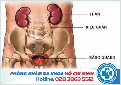 Phòng khám nam khoa ở huyện Hóc Môn uy tín