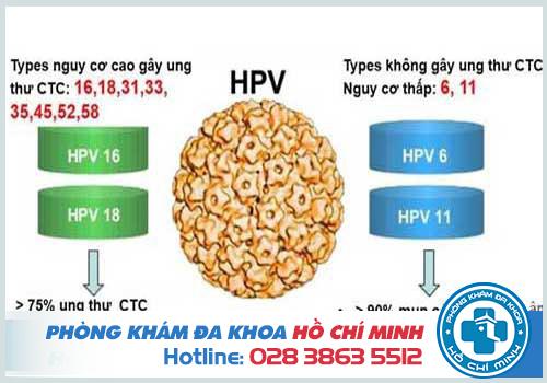 Xét nghiệm HPV ở đâu
