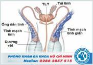 Khám tinh hoàn ở khoa nào tại bệnh viện TPHCM